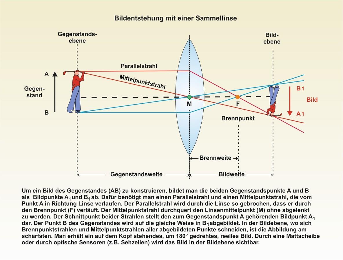 Wunderbar Auge Anatomie Diagramm Bilder - Anatomie Von Menschlichen ...